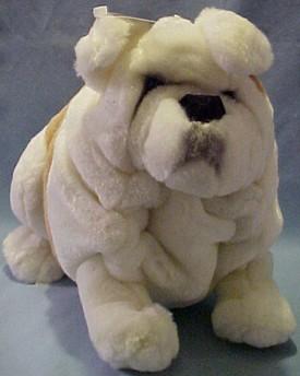 Great Bull Chubby Adorable Dog - AP24788ChurchillBulldogMed  Best Photo Reference_24763  .jpg